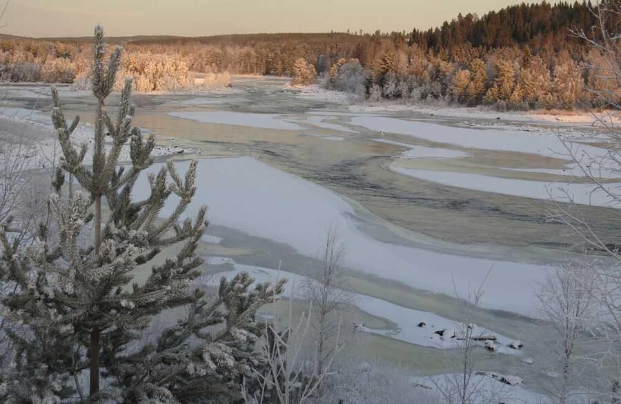 Vindelälven slingrar sig genom landskapet. Foto: Christina Liljestrand