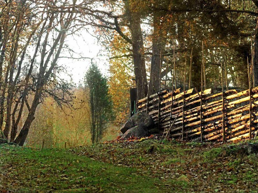 En av flera vackra vandringsleder som Kristina har anlagt i sin populära skog. Gärdsgårdarna är byggda på gammaldags sätt.