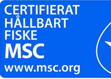 msc (1)