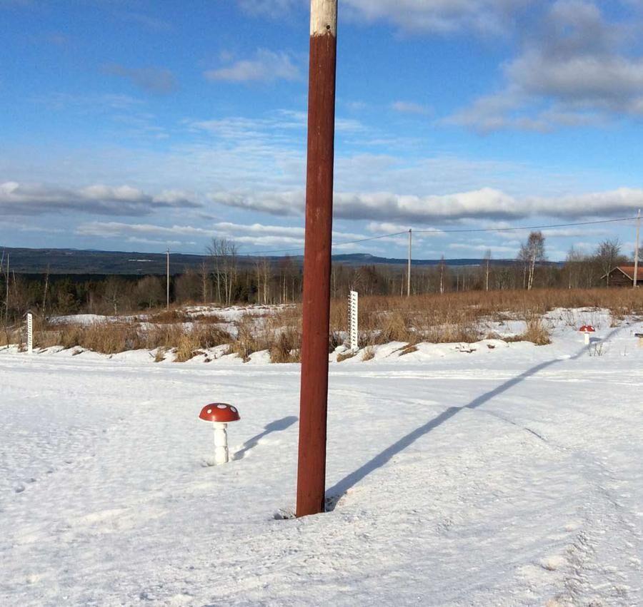 Här är en av telefonstolparna som Leif har målat röda. Foto: Privat.