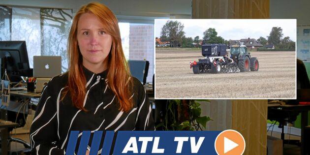ATL TV: Såmaskiner i nytt försök