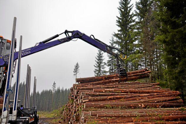 För att maximera skogens klimatnytta bör så mycket koldioxid som möjligt låsas i levande eller död ved, skriver debattören.