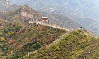 Kina planterar skog motsvarande ett helt Irland