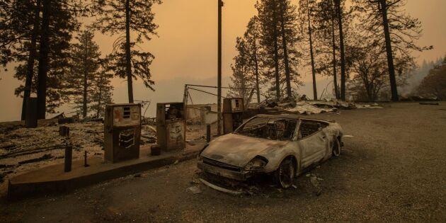 Brandkatastrofen i Kalifornien – det nya onormala