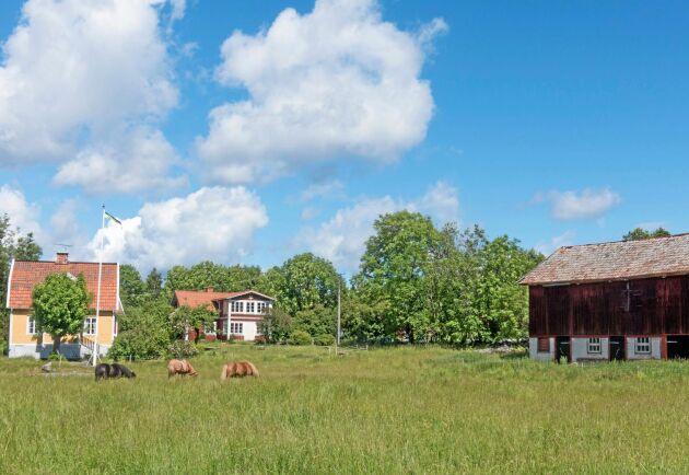 Norrgården ägs av lokalbefolkningen via en stiftelse och kan delvis få brukas av öns nya bonde.