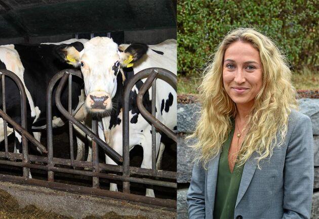 Jag pratar gärna djuromsorg med Uppdrag Gransknings redaktion, skriver Elisabeth Hidén.