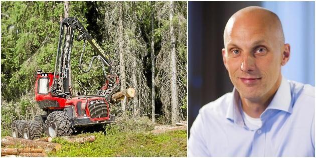 Mellanskog bäst i Sverige på jämställdhet