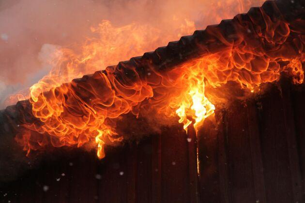 Ett tiotal grisar innebrändes i en brand i Lövnäs i Vilhelmina kommun i går kväll.