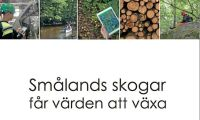 Småland först med regional skogsstrategi