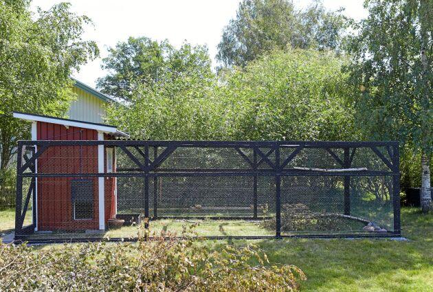 Det lilla röda hönshuset med tillhörande utegård hemma hos Patric och Emma Dalfjärd i Vagersta.