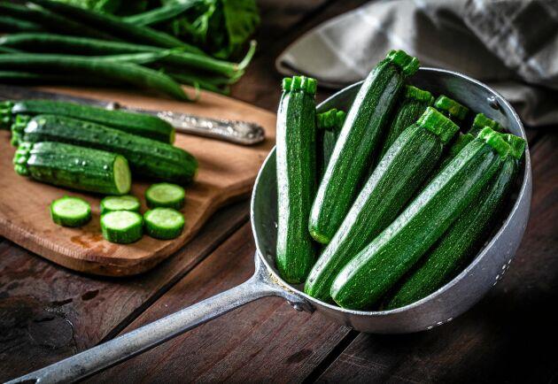 Rik på zucchini? Här får du tips på hur du tar hand om skörden.