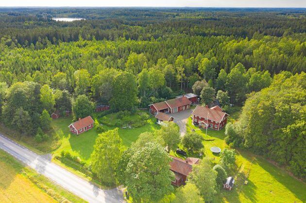 De vackra omgivningarna kring Lidhult fick familjen att vilja flytta hit.
