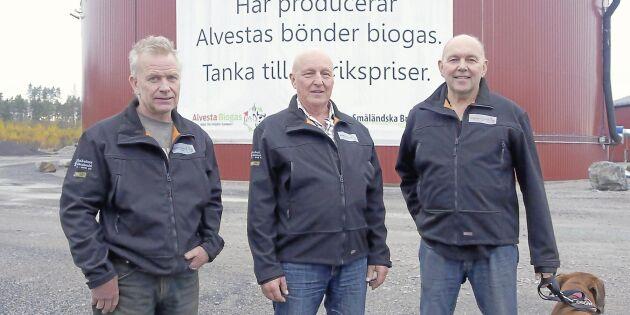Deras gödsel blir biogas till regionaltrafiken