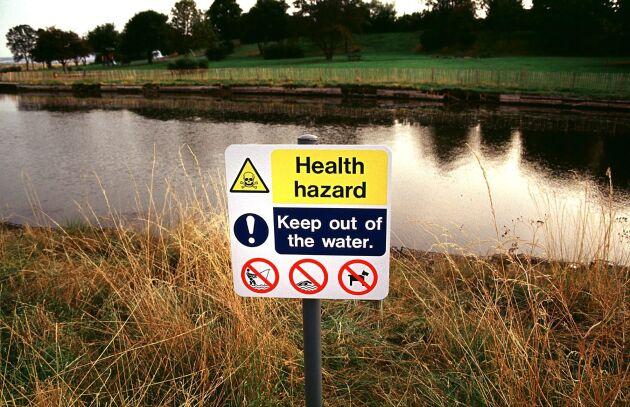 Vattendrag i Storbritannien förorenat av algblomning 2004.