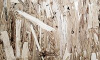 Miljoner till satsning på träfiber