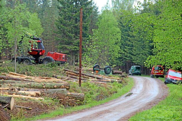 Lastbil på skogsväg är inte bara det lönsammaste sättet att nå avverkningsplatsen. Det kan också vara det miljövänligaste alternativet.