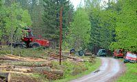 SNF ser miljöovänliga skogsvägar