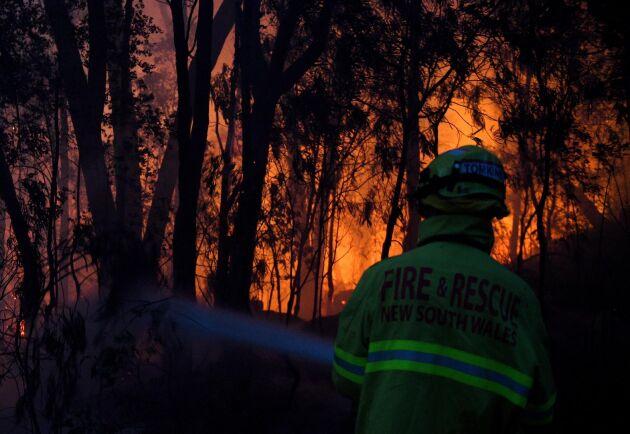 Brandmän bekämpar skogsbränder i Woodford, New South Wales, Australien.