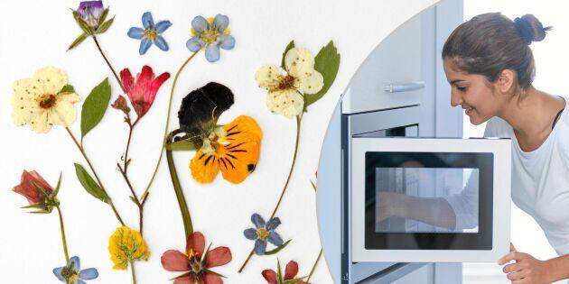 Supersnabbt pyssel: Pressa blommor – i mikron