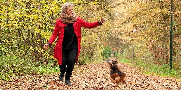 Så kan du bromsa hjärnans åldrande – 4 hälsoråd