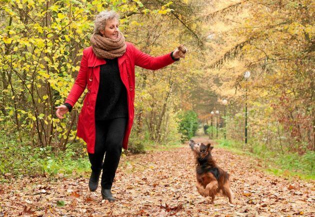 Roliga promenader med hunden är ett perfekt sätt att bromsa de negativa effekterna av din hjärnas åldrande.