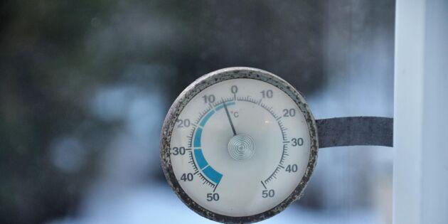 Spå vintervädret vid Mickelsmäss – 6 tecken att leta efter