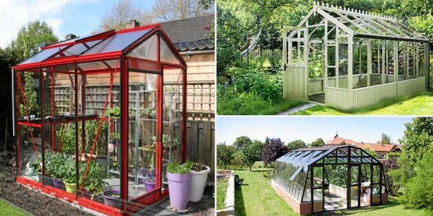 8 spännande nyheter för dig som vill köpa växthus