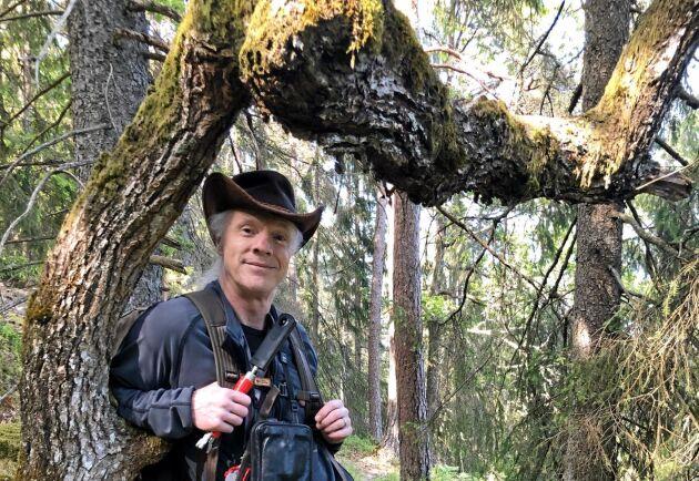 Verksamhetsledaren för Naturarvet, Lo Jarl, står lutad mot gammel-eken Knut, som sponsras av ett företag.