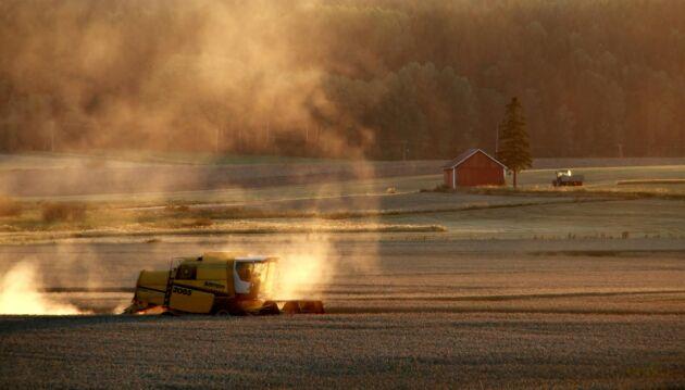 Under augusti har 420 mjölkbönder från olika län svarat på LRF:s stora foderenkät.