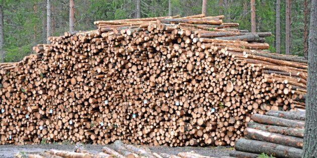 Skogsbolagen tar hem vinsten