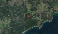 Ny ägare till skogsfastighet på Gotland