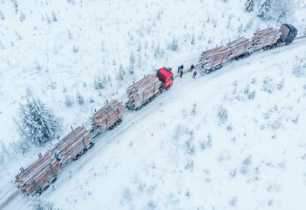 Volvo har i tio år testat HCT-ekipage mellan Överkalix och Piteå. I samarbete med Sveaskog tar de nu nästa steg.