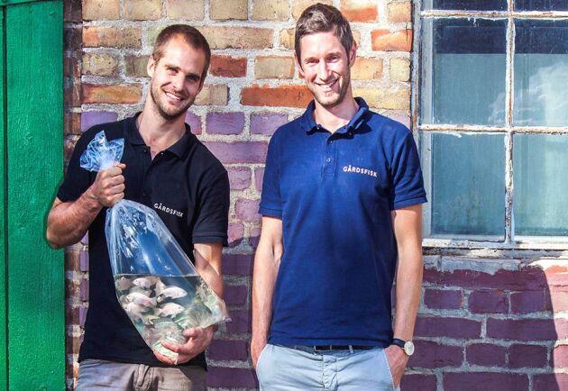 Johan Ljungquist och Mikael Olenmark är innovatörerna bakom Gårdsfisk.