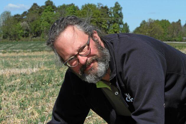 Ny utmaning. Adam Giertta på Munsö i Mälaren ser stora fördelar med direktsådd efter nio år. När han nu tar steget över till ekologiskt på delar av arealen är den stora frågan hur detta ska kombineras med att försöka minimera jordbearbetningen.