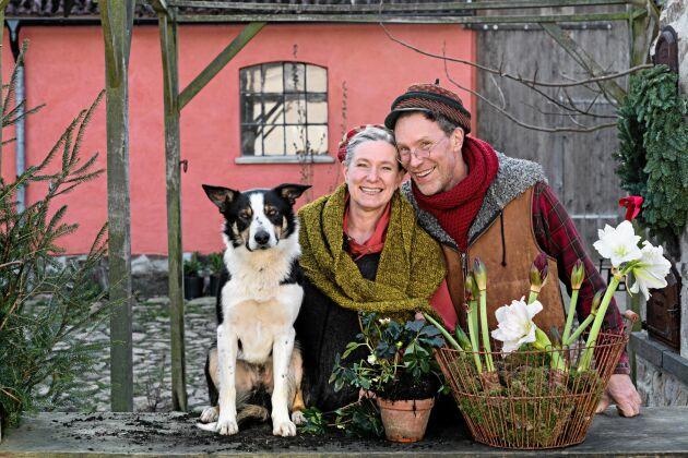 """Julförberedelser hemma hos Marie och Gustav Mandelmann hemma på Djupadal. """"Mandelmanns jul"""" visas i TV4 den 17 december klockan 20."""