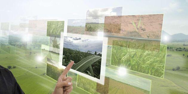 Nyhetstjänst ska ge kunskap om lantbrukets digitalisering