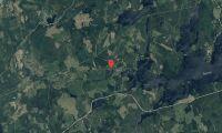 Ägarbyte för skogsfastighet i Dalarna