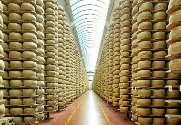Tillverkningen av parmesan och grana padano är en miljardindustri med omkring 500 000 kor som levererar mjölk.
