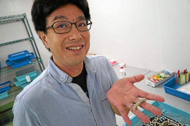 Tetsuya Iizuka har tagit fram en silkesmask som spinner självlysande tråd.