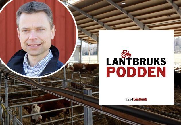 """""""Ett stort problem är att forskningen inte drivs tillsammans med företagen"""", menar Sone Ekman, Jordbruksverket, när han gästar Lantbrukspodden."""