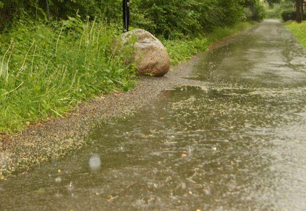 Regnvattnet bör inte dräneras för fort.