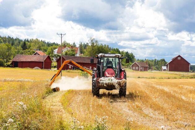 Alexander Karlsson, som är ganska ny arrendator på marken, slår dikeskanterna med buskröjaren.