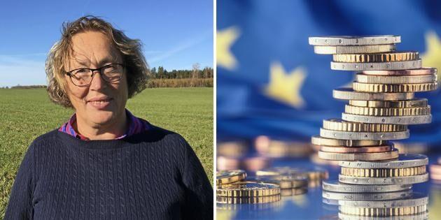 Kan jag räkna med EU-stöd på samma nivå?