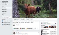 Facebook bra hjälp i foderkrisen