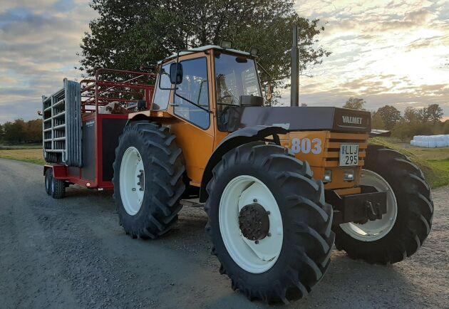 Noll timmar i skogen är en förklaring till det fina skicket på den snart 40 år gamla traktorn.