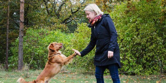 Anna blev flerfaldig mästare i agility – genom att dressera får