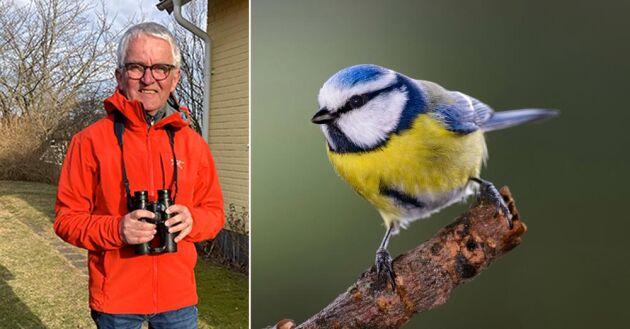 Anders Wirdheim är journalist med stort natur- och fågelintresse och kan utan att tveka identifiera ett par tusen fåglar och ett par hundra läten. Intresset har han haft sedan barnsben.