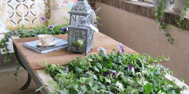 Bord och blomlåda av gammalt kar
