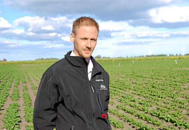 Joakim Ekelöf, Nordic Beet Research.
