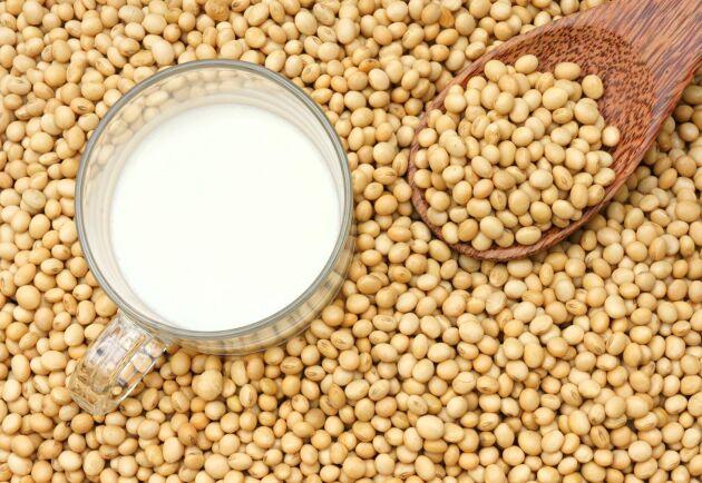 Veganprodukter som sojamjölk kan vara ett sätt att bredda verksamheten.